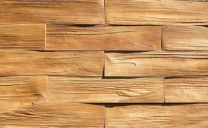 TIMBER_1_t